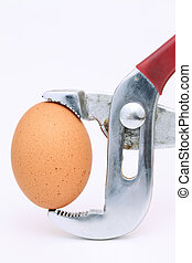 Brown egg held in pliers on white
