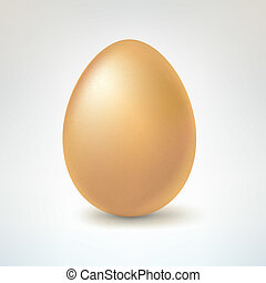 Brown egg, isolated on white background