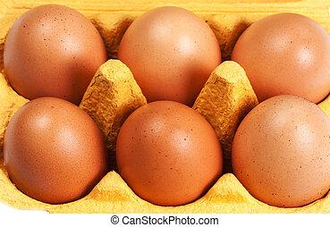 Brown Eggs Chicken Egg