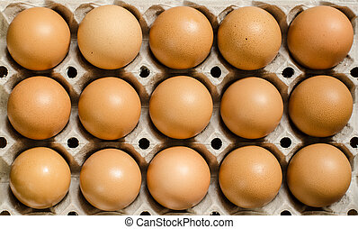 Brown eggs - Fifteen brown eggs in a carton