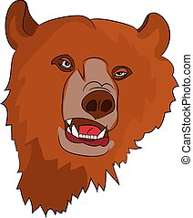 Brown evil grizzly bear (head), on white background,