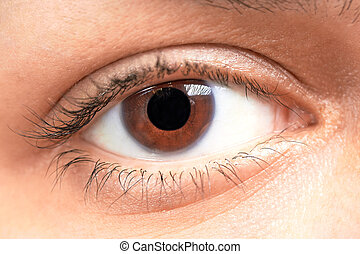 brown eyes girl - Beautiful brown eyes of young girl,...