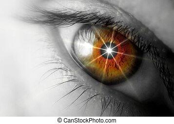 Brown eyes ,close up image