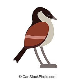 brown forest bird flat illustration