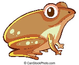 Brown frog on white background