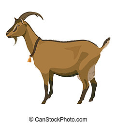 Brown goat, side view, isolated - Brown goat with golden...