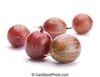 Brown gooseberry fruit