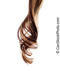 brown hair on white background - piece of brown hair on...
