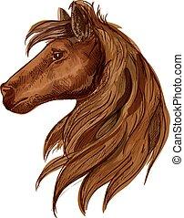 Brown horse head sketch portrait