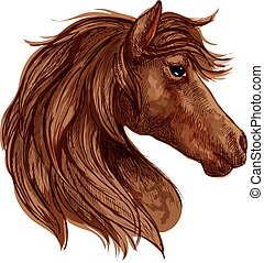 Brown horse head sketch with arabian racehorse