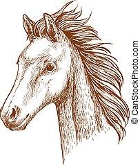 Brown horse pencil sketch portrait - Mustang pencil sketch...