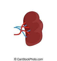 Brown kidney icon, flat style