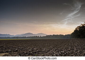 Brown Landscape in Extensive View