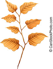 Brown leaves - Illustration of the brown leaves on a white...