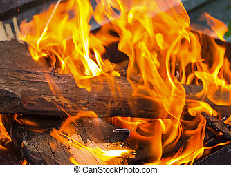 brown log is covered with an orange bright flame of a fire...