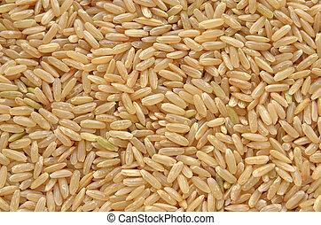 Brown long grain rice