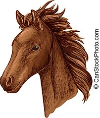 Brown mare horse head sketch with arabian filly