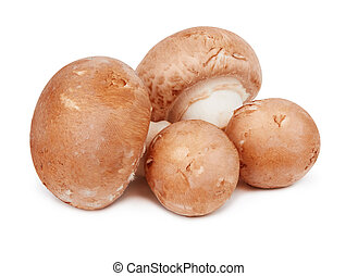 Brown mushrooms isolated on a white background