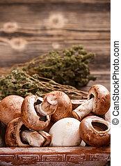Brown mushrooms on rustic background