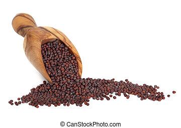 Brown Mustard Seed - Brown mustard seed in an olive wood ...