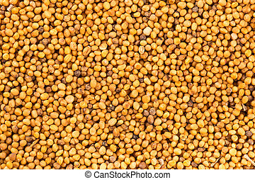 Brown mustard seeds abstract background