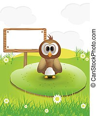 brown owl in nature