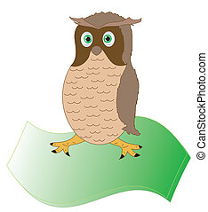 Brown owl, object isolated