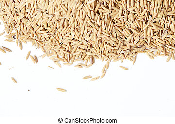Brown paddy rice closed up Background