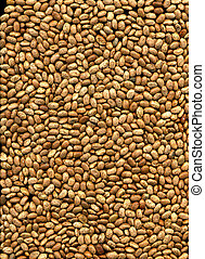 Brown Pinto Beans - Brown Pinto beans laid flat, could be a ...