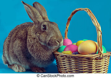 Brown rabbit with basket of colored eggs