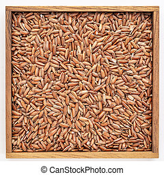 brown rice grain in wooden box