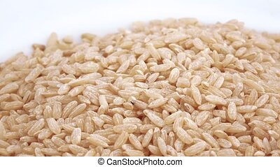 Brown rice in bulk - Brown rice premium quality in bulk slim...