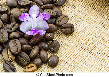 Brown roasted coffee beans.
