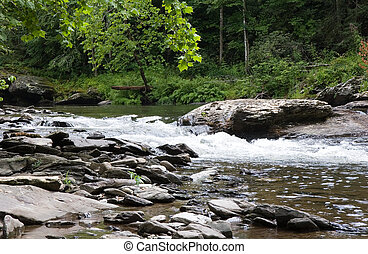 Brown Rocks in Stream
