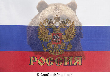 Brown russian bear on the Russian flag