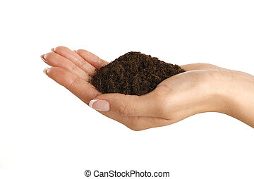 Brown soil in a beautiful female hand
