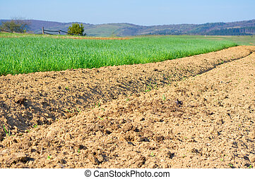Brown soil of an agricultural field in the mountains