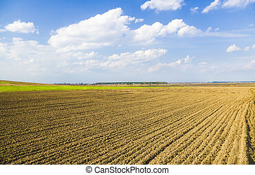 agricultural field - Brown soil of an agricultural field