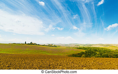 brown soil under a blue sky in Tuscany