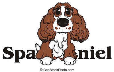 brown spaniel and letters