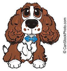 brown spaniel boy