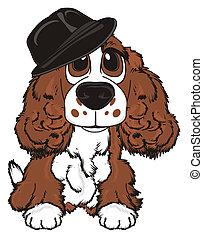 brown spaniel in hat