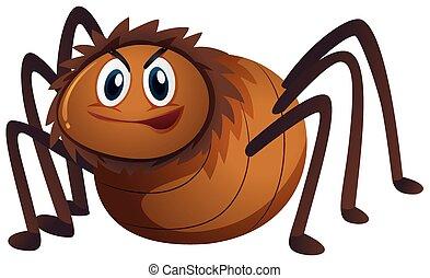 Brown spider on white background