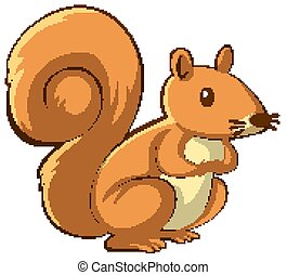 Brown squirrel on white background