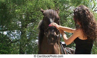 Brown stallion - Young woman petting brown stallion