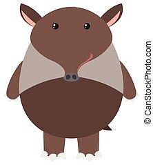 Brown tapir on white background