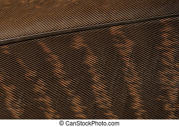 Brown textured feather close up