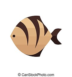 Brown Tiger fish