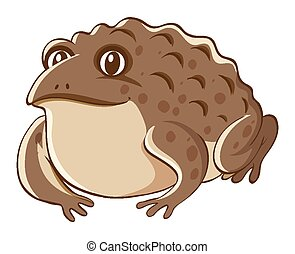 Brown toad on white background