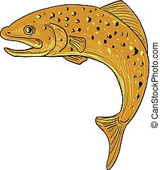 Brown Trout Jumping Drawing
